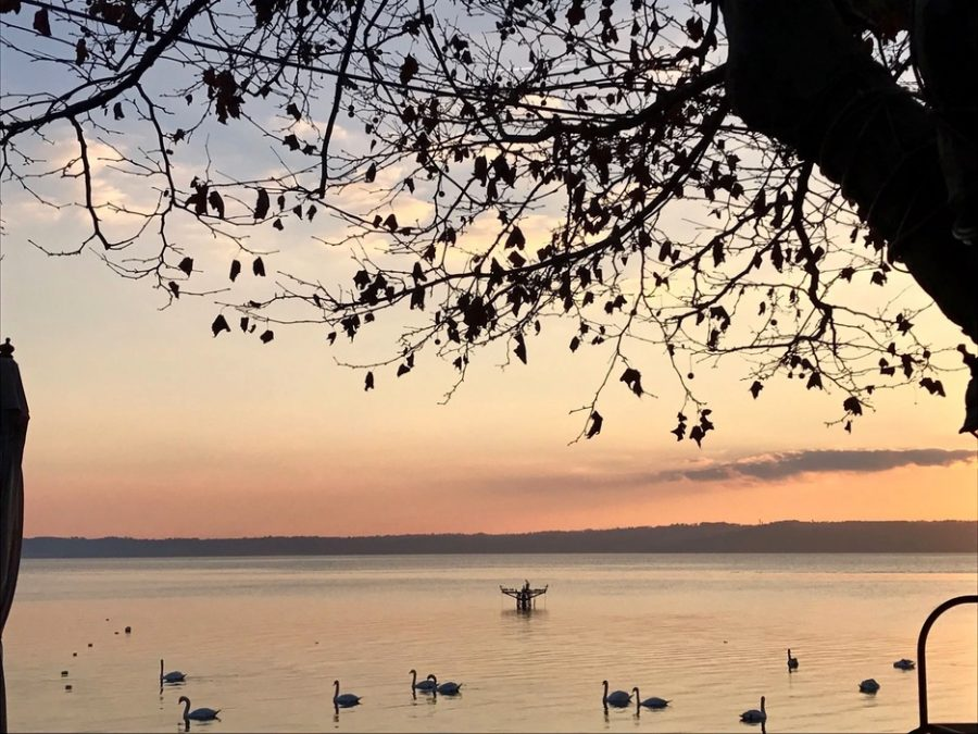 the best restaurants in lake bracciano - la grotta azzurra