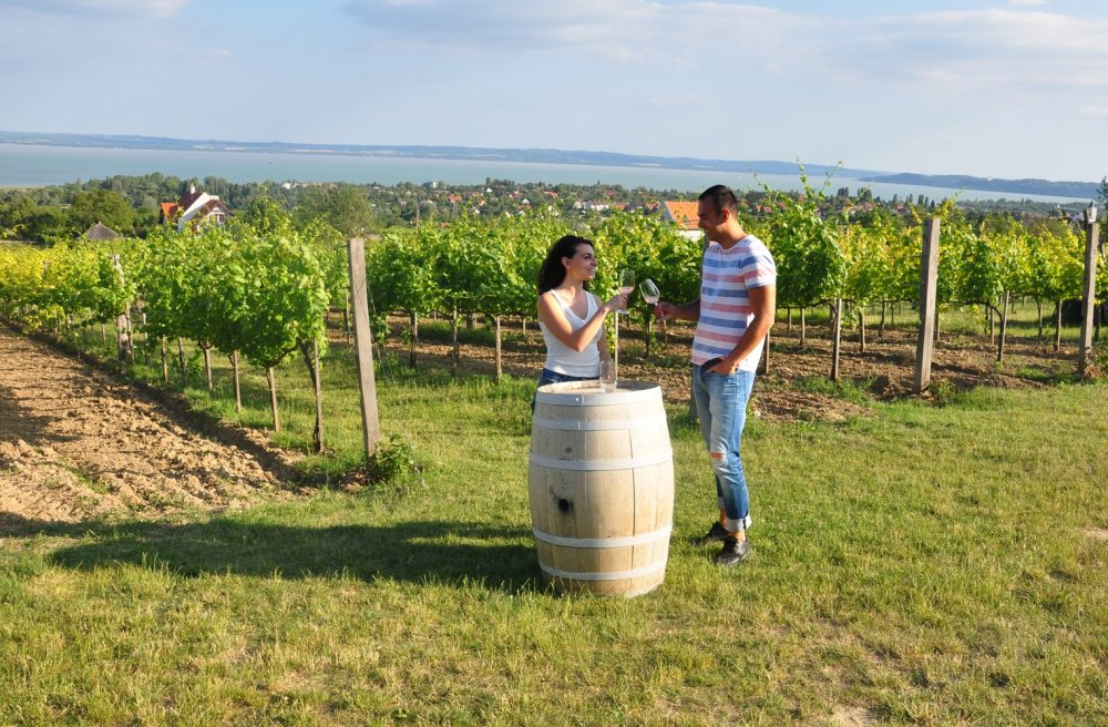 wellness and wine: wine tasting tours in Hungary
