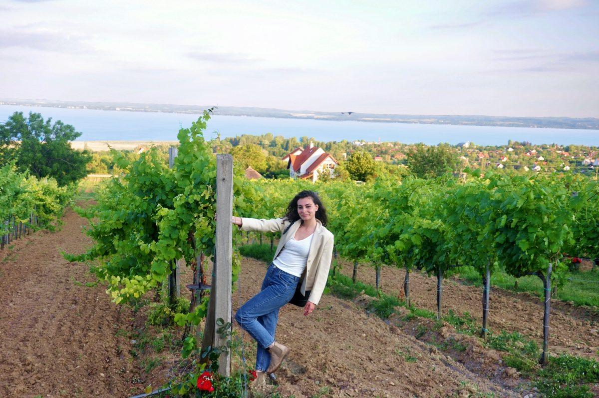 wellness and wine hungary