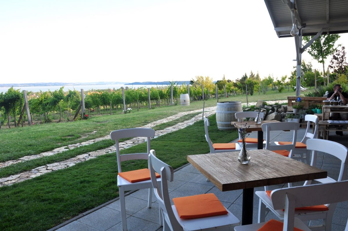 homola borteraz lake balaton winery