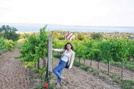 Wine tasting in Hungary: 3 wineries not to miss