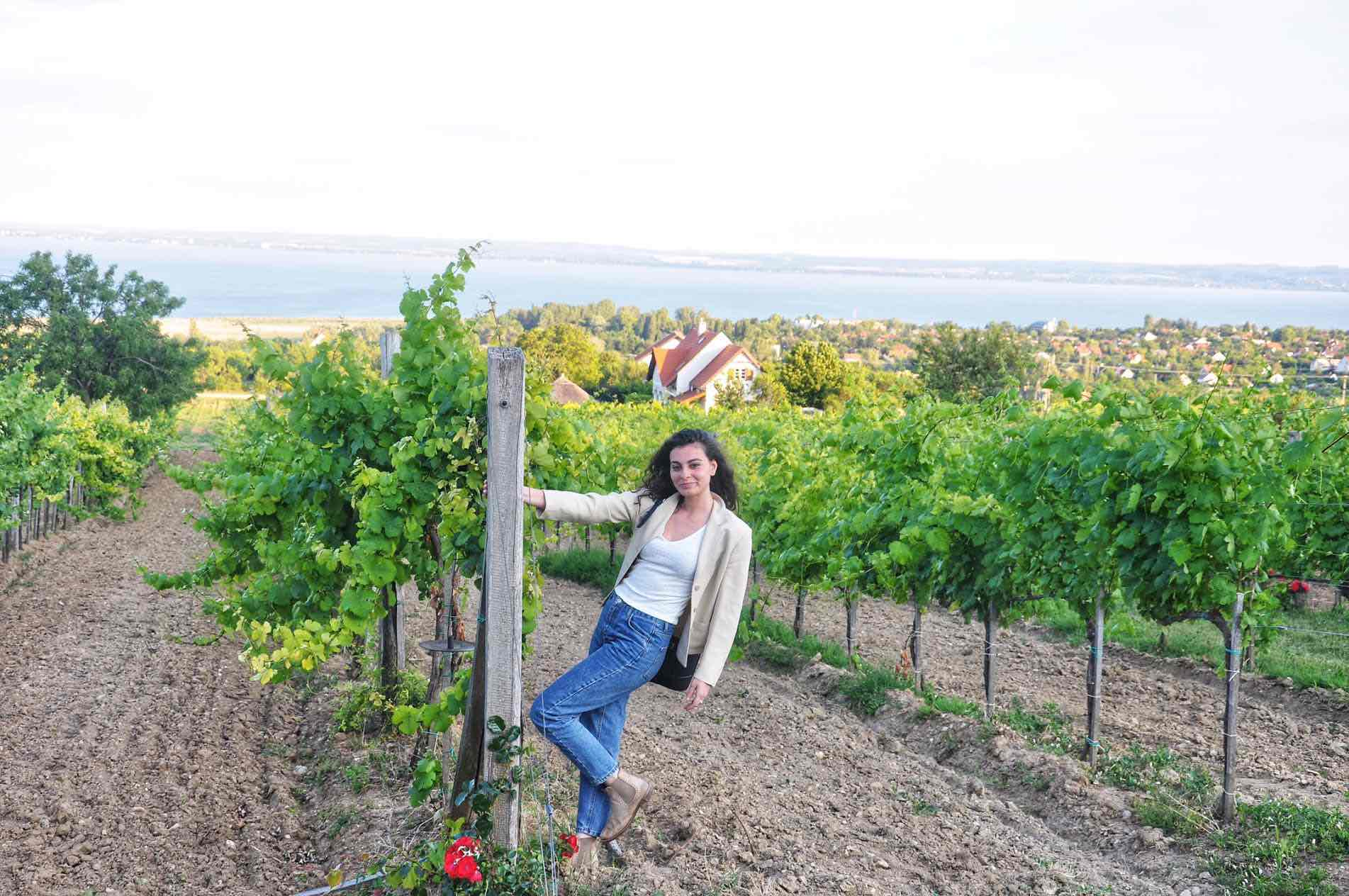 Lake Balaton wineries and vineyards