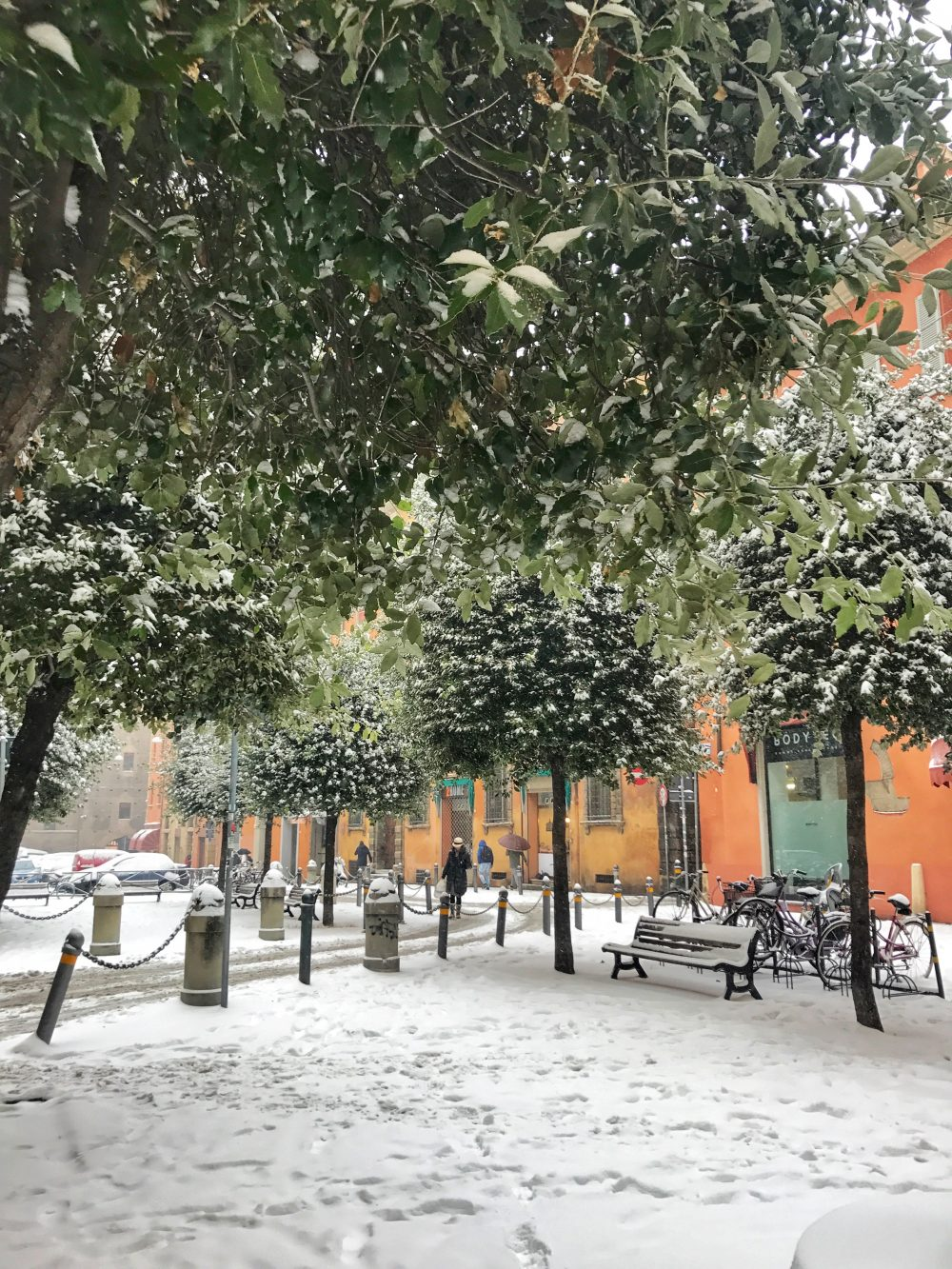 Bologna under the snow