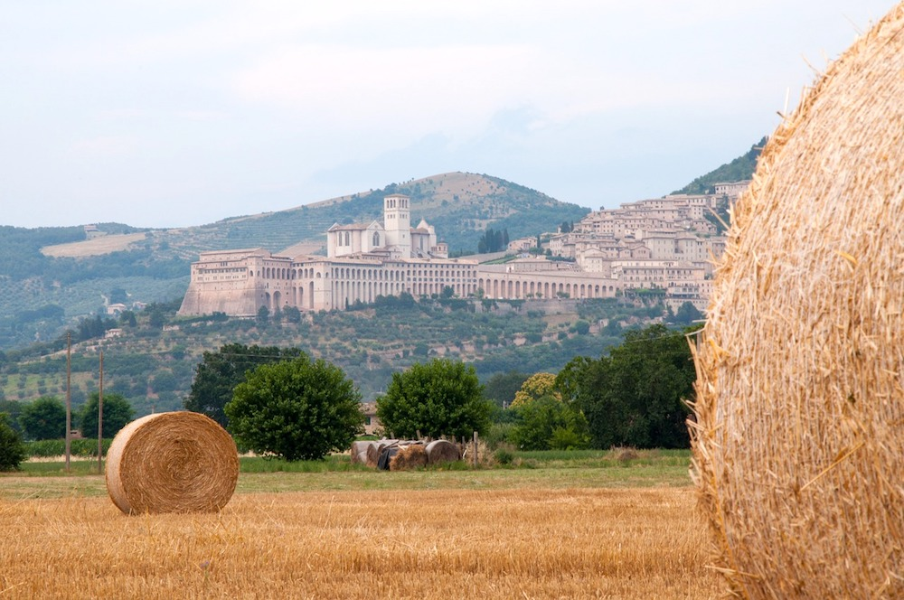 Day trips from Rome: Assisi
