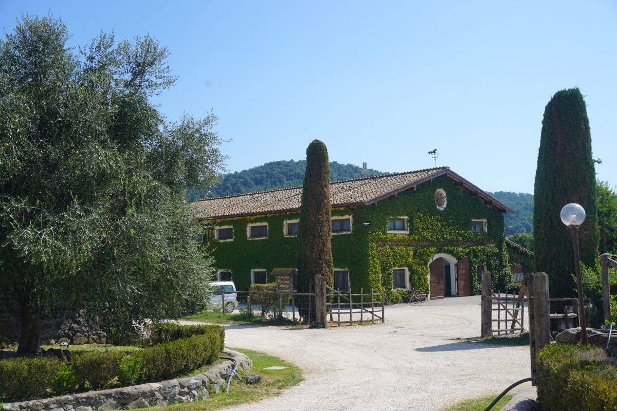 The Best Agriturismi in Lazio: Authentic Farm-Stays near Rome, Italy